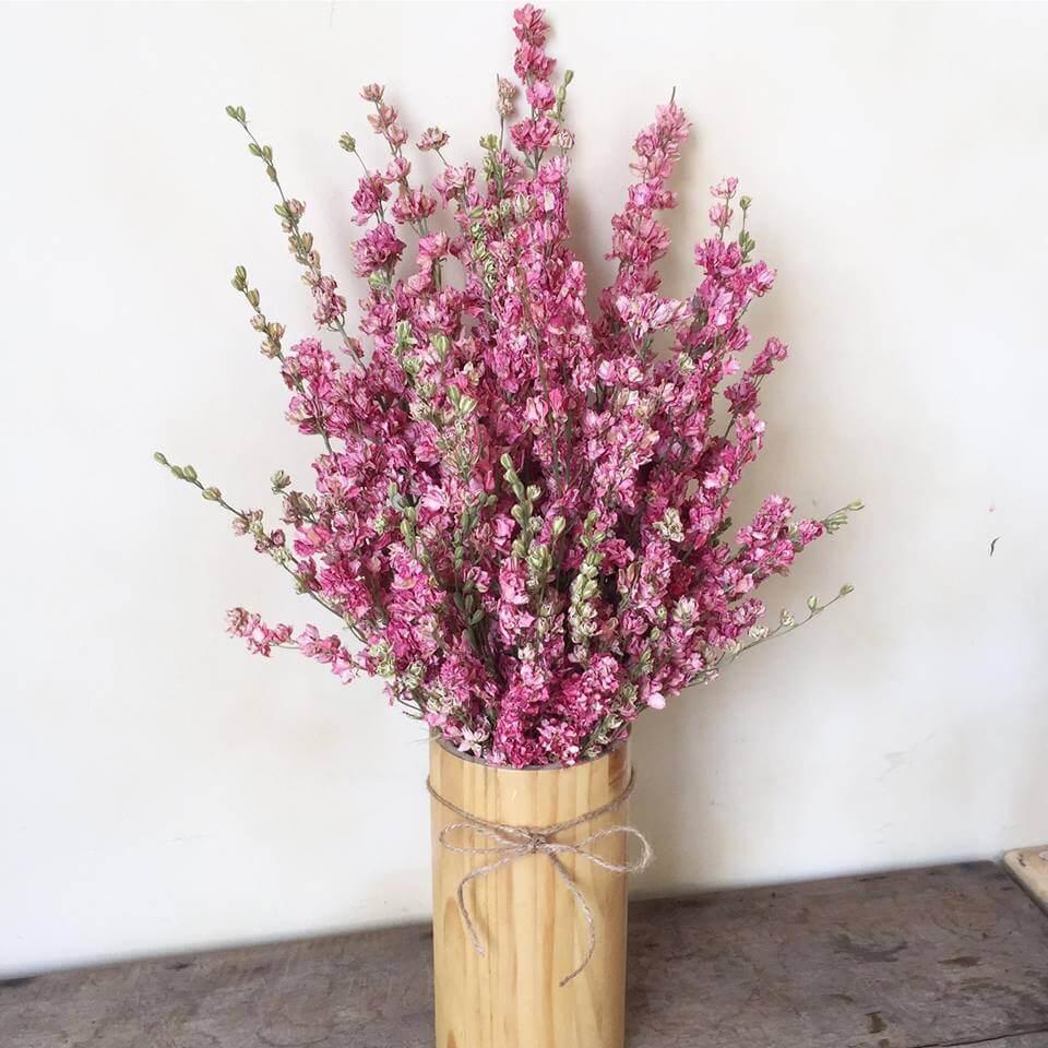 Hoa Phi yến khô