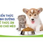 Cách lựa chọn thức ăn cho chó mèo, các thương hiệu thức ăn sẵn chất lượng được ưa chuộng nhất như me-o, whiskas, royal canin